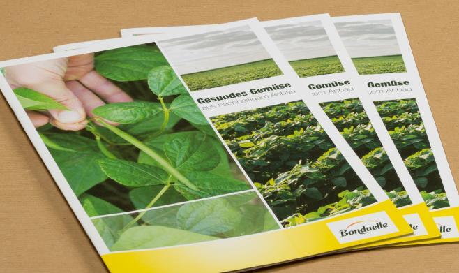 Nachhaltigkeitsbroschüre Bonduelle I ASK Marketing
