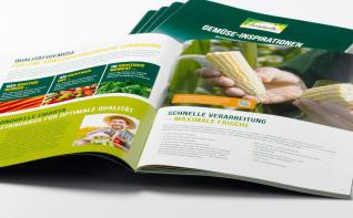 Gemüse-Inspirationen I ASK Marketing